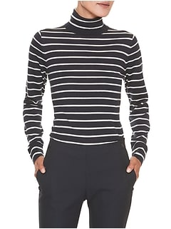 Stripe Merino Wool Turtleneck Sweater