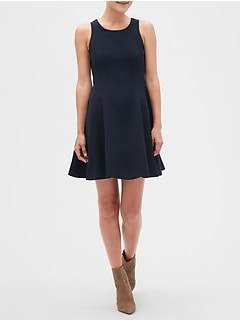Petite Panel Fit And Flare Dress